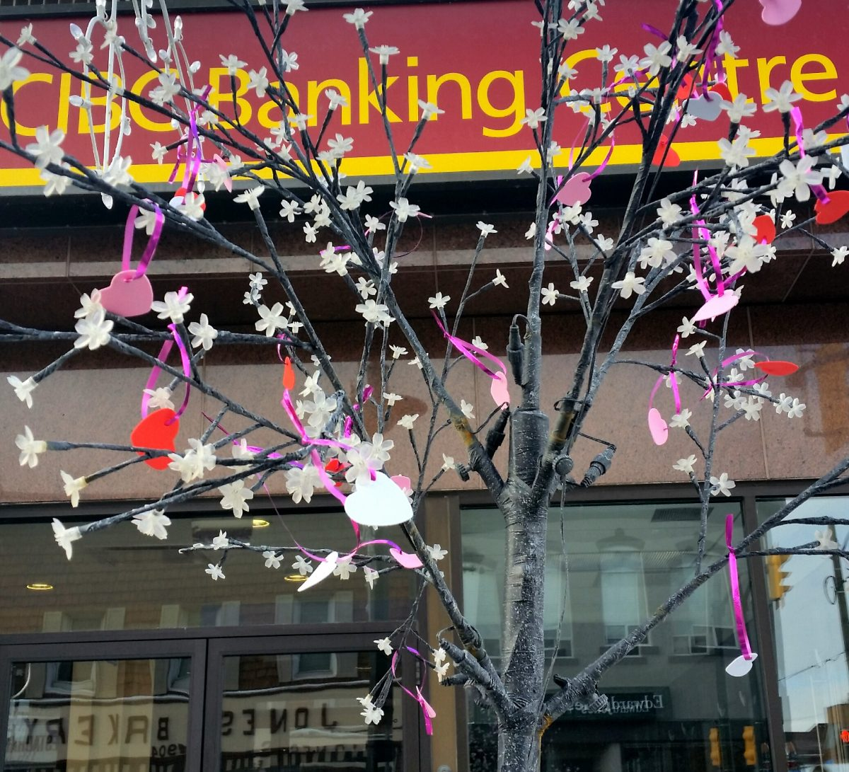 """""""Valentine's Heart Tree"""" in front of CIBC, Argyle Street, North"""