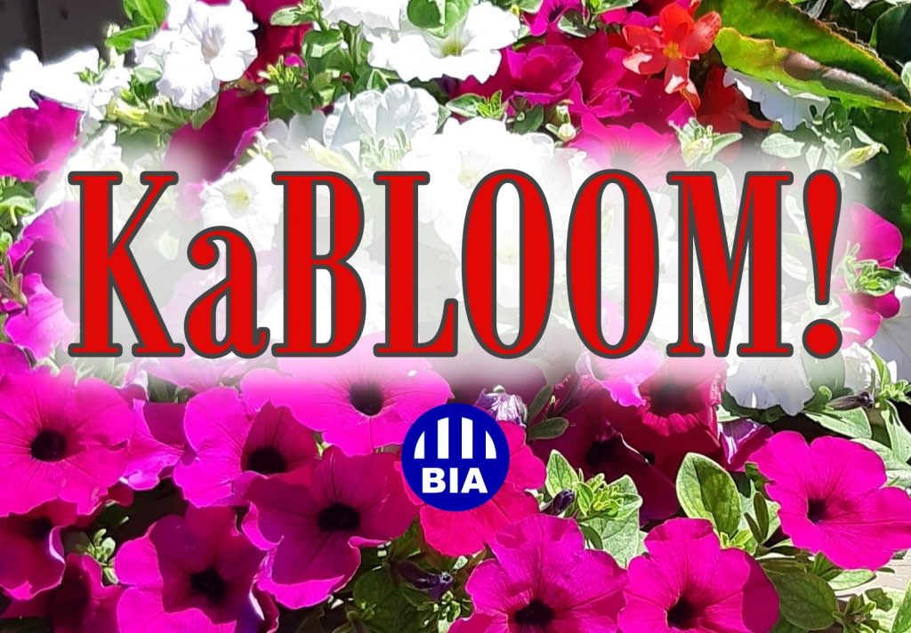 KaBLOOM!